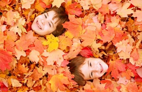 Autumn Faces